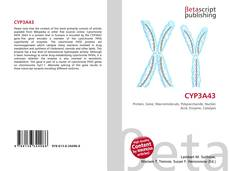 Bookcover of CYP3A43