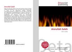 Amrullah Saleh的封面