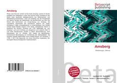 Buchcover von Amsberg