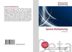 Bookcover of Spatial Multiplexing