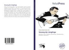 Buchcover von Gesang der Jünglinge