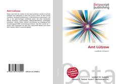 Capa do livro de Amt Lützow