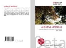 Bookcover of Juniperus Saltillensis