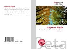 Buchcover von Juniperus Rigida