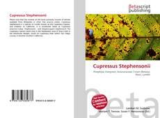 Cupressus Stephensonii kitap kapağı