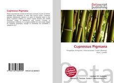 Cupressus Pigmaea kitap kapağı