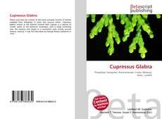 Cupressus Glabra kitap kapağı