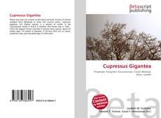 Capa do livro de Cupressus Gigantea