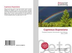 Cupressus Dupreziana kitap kapağı