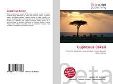 Cupressus Bakeri kitap kapağı