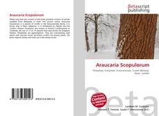 Bookcover of Araucaria Scopulorum