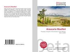 Bookcover of Araucaria Muelleri