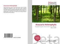 Portada del libro de Araucaria Heterophylla