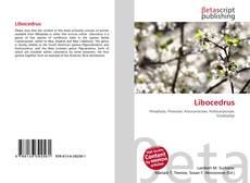 Bookcover of Libocedrus