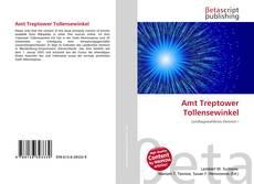 Bookcover of Amt Treptower Tollensewinkel