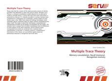 Обложка Multiple Trace Theory