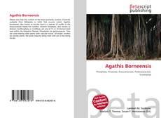 Portada del libro de Agathis Borneensis