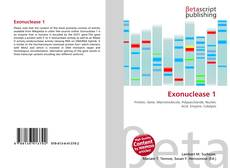 Bookcover of Exonuclease 1