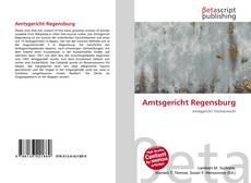 Bookcover of Amtsgericht Regensburg