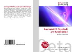 Capa do livro de Amtsgericht Neustadt am Rübenberge