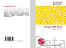 Buchcover von Amtsgericht Peine