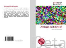 Обложка Amtsgericht Schwelm