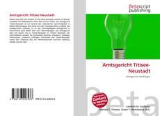 Capa do livro de Amtsgericht Titisee-Neustadt