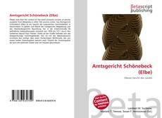 Borítókép a  Amtsgericht Schönebeck (Elbe) - hoz