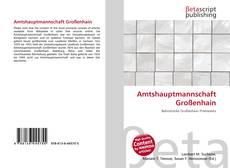 Portada del libro de Amtshauptmannschaft Großenhain