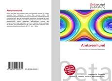 Capa do livro de Amtsvormund