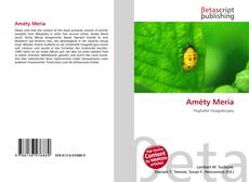 Buchcover von Améty Meria