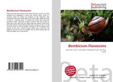 Bookcover of Bembicium Flavescens