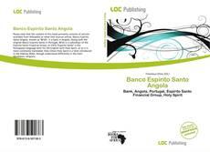 Capa do livro de Banco Espírito Santo Angola