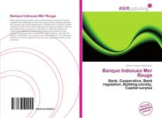 Banque Indosuez Mer Rouge kitap kapağı
