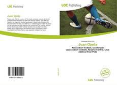 Bookcover of Juan Ojeda