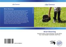 Brian Downing的封面