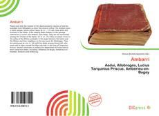 Bookcover of Ambarri