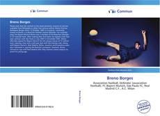 Bookcover of Breno Borges