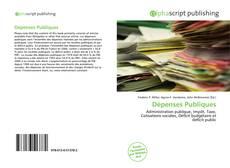 Borítókép a  Dépenses Publiques - hoz