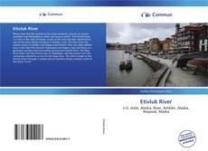 Bookcover of Etivluk River