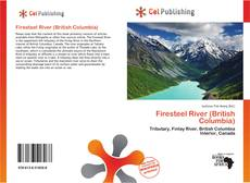 Bookcover of Firesteel River (British Columbia)