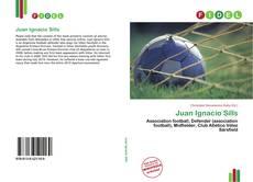 Bookcover of Juan Ignacio Sills