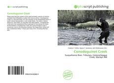Bookcover of Conodoguinet Creek