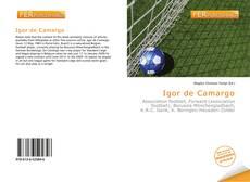 Bookcover of Igor de Camargo