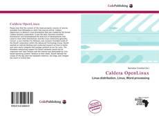 Capa do livro de Caldera OpenLinux
