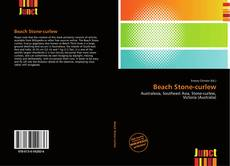 Bookcover of Beach Stone-curlew