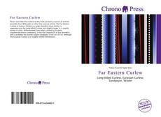 Обложка Far Eastern Curlew