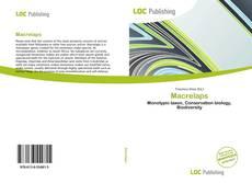 Buchcover von Macrelaps
