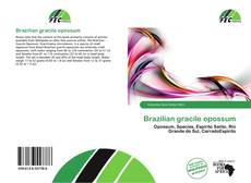 Bookcover of Brazilian gracile opossum