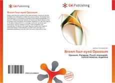Обложка Brown four-eyed Opossum